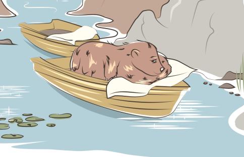 boatbear